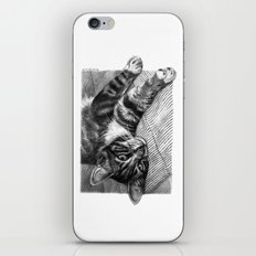 Resting Kitty G064 iPhone & iPod Skin