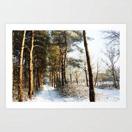 Forest Snow Scene Art Print