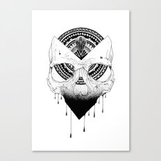 Enigmatic Skull Canvas Print