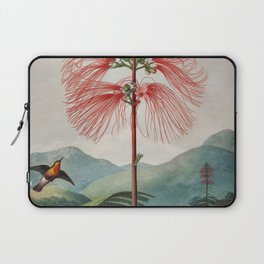 Robert John Thornton - Large–Flowering Sensitive Plant Laptop Sleeve