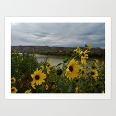 Yellow Flowers Before the Storm Art Print