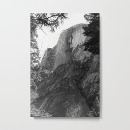 Half Dome with Leaf Frame Metal Print