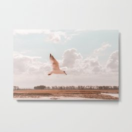 Flying bird Print, white seagull wings, twilight sunset nature photography, neutral peach, peace Metal Print