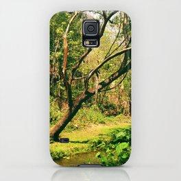 Wang Madcha Creek iPhone Case