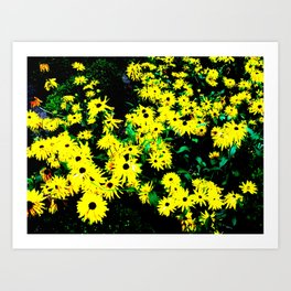Yellow Flowers (Edited)  Art Print