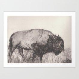 Mouse and Buffalo Art Print