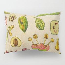 botany Pillow Sham
