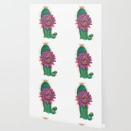 Crowned Cactus with Pink Flower Blossom Wallpaper