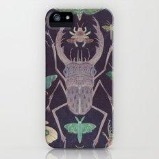 Entomologist's Wish (The Neon Version) iPhone (5, 5s) Slim Case