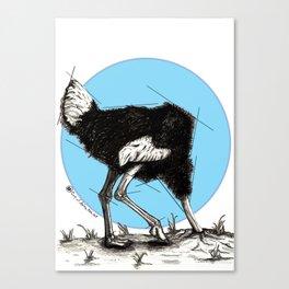 Ostrich Sun Canvas Print