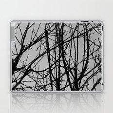 Postage Stamp World Laptop & iPad Skin