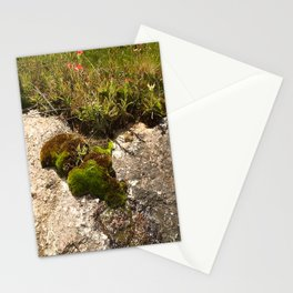 A Hill Country Oasis... Stationery Cards