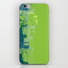 112117 iPhone Skin