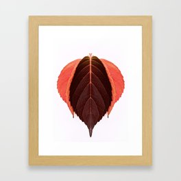 Red Autumn Leaves Framed Art Print