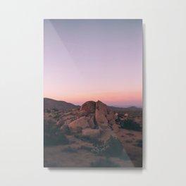 Pink Desert Palm Desert Metal Print