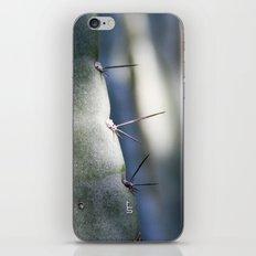 Needles I iPhone & iPod Skin