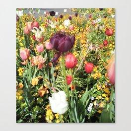 Flower Schadows Canvas Print