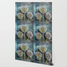 Three Allium Flowers Wallpaper