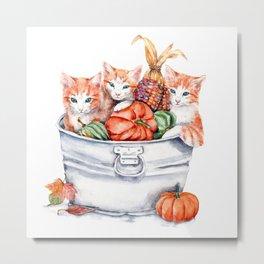 Harvest Kittens Metal Print