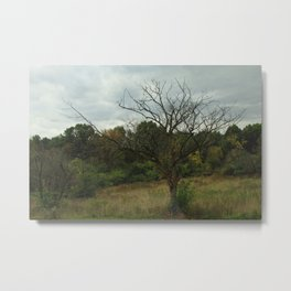 Hazy Forest No.3 Metal Print