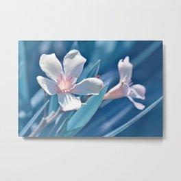 Oleander 141 Metal Print