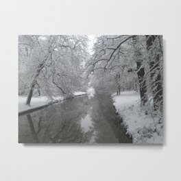 Cold Winter Metal Print