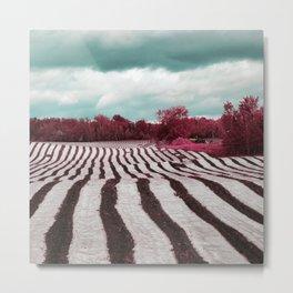 Infrared by Jean-François Dupuis Metal Print