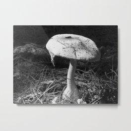 Shroom Metal Print
