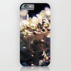 Gently Slim Case iPhone 6s