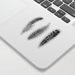 Feather Trio | Black and White Sticker