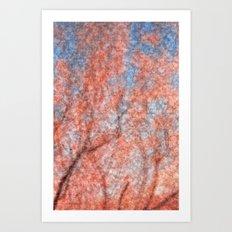 Velvet Cherry Blossom Dream Art Print