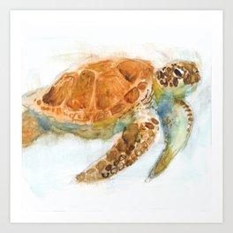 Watercolour Turtle Art Print