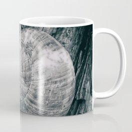 Time in a shell Coffee Mug