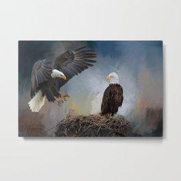 Eagles Nest Metal Print