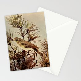 Neltje Blanchan - Bird Neighbours (1903) - Warbling Vireo Stationery Cards