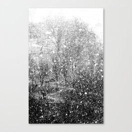 Snow in early fall(3) Canvas Print