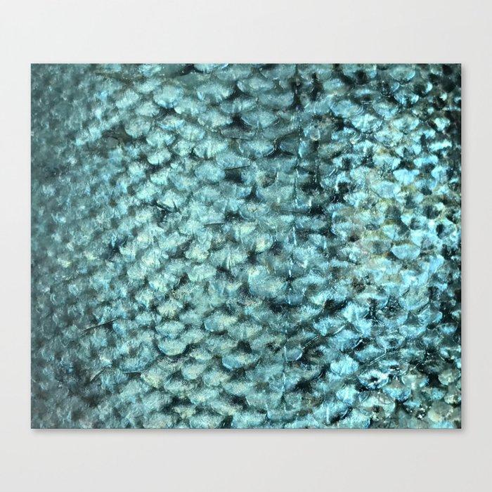 Blue aqua mermaid scales Canvas Print