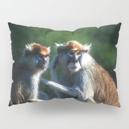 Careful Pillow Sham