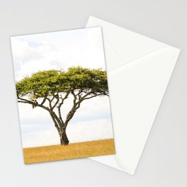 5101 Tree Of Life • Acacia Vachellia Tortilis in the Serengeti Plains Stationery Cards