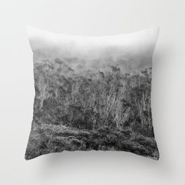California Coastal Fog Throw Pillow