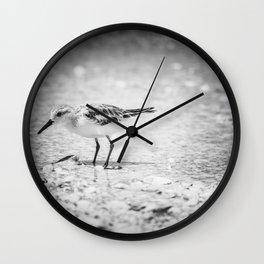 little birdie Wall Clock