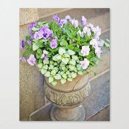 Purple Flowers Alongside Stoop Canvas Print
