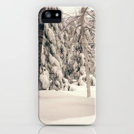 Winter Woods 2 iPhone Case