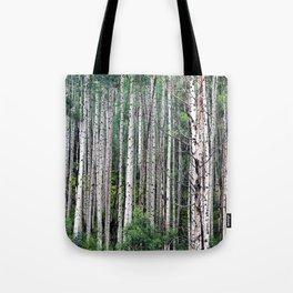 Green Grove of White Aspens Tote Bag