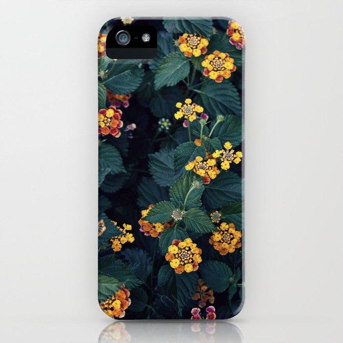 Beautiful flowers over my neighborhood iPhone Case