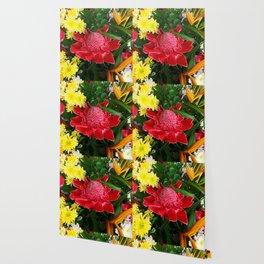 Red Torch Ginger Flower Wallpaper