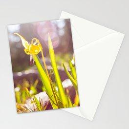 joy of midday sun Stationery Cards