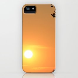 Golden Kansas Sunset iPhone Case