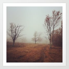Canaan Valley Trail Art Print