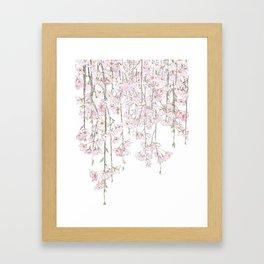 pink cherry blossom spring 2018 Framed Art Print
